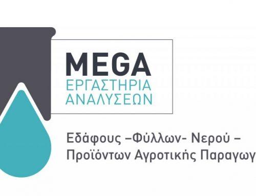 Megalabo