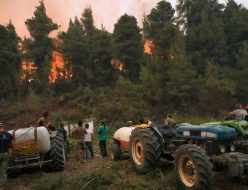 ΟΣΔΕ και ενημερότητα ΕΛΓΑ για αποζημιώσεις πυρόπληκτων αγροτικών εκμεταλλεύσεων