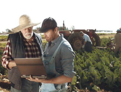 Πριμ συνεργασίας 7ετούς διάρκειας για τους αγρότες που μεταβιβάζουν την εκμετάλλευση σε νέους