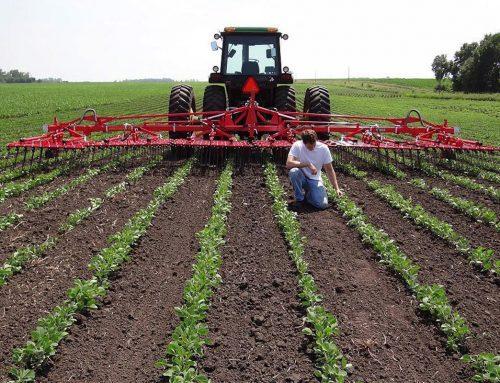 Οι 15 προϋποθέσεις για πετυχημένο φάκελο στο πρόγραμμα Νέων Αγροτών και τα πρώτα στοιχεία από το ΟΣΔΕ